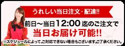 うれしい当日注文・配達!!前日~当日12:00迄のご注文で当日お届け可能!!