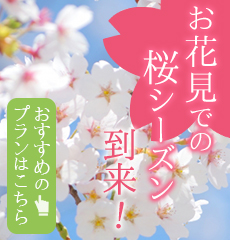 お花見での桜シーズン到来